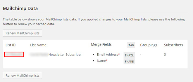 mailchimp installation final